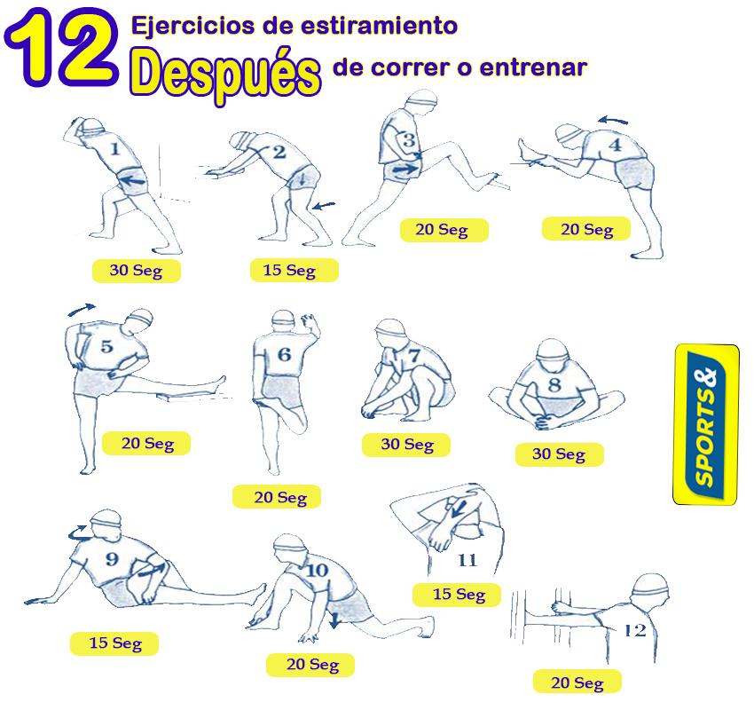12 EJERCICIOS DE ESTIRAMIENTO